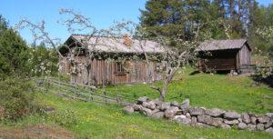 Keväinen Paikkarin torppa. Vanha harmaantunut pieni asuinrakennus. Etualalla kiviaitaa ja vanhaa pisteaitaa. Taustalla harmaa aittarakennus. Nurmikkoa ja omenapuita.